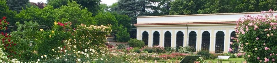 Roseto della Villa Reale di Monza